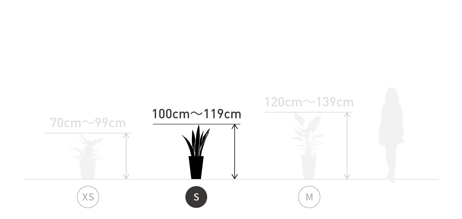 サイズ目安 S 100〜119cm