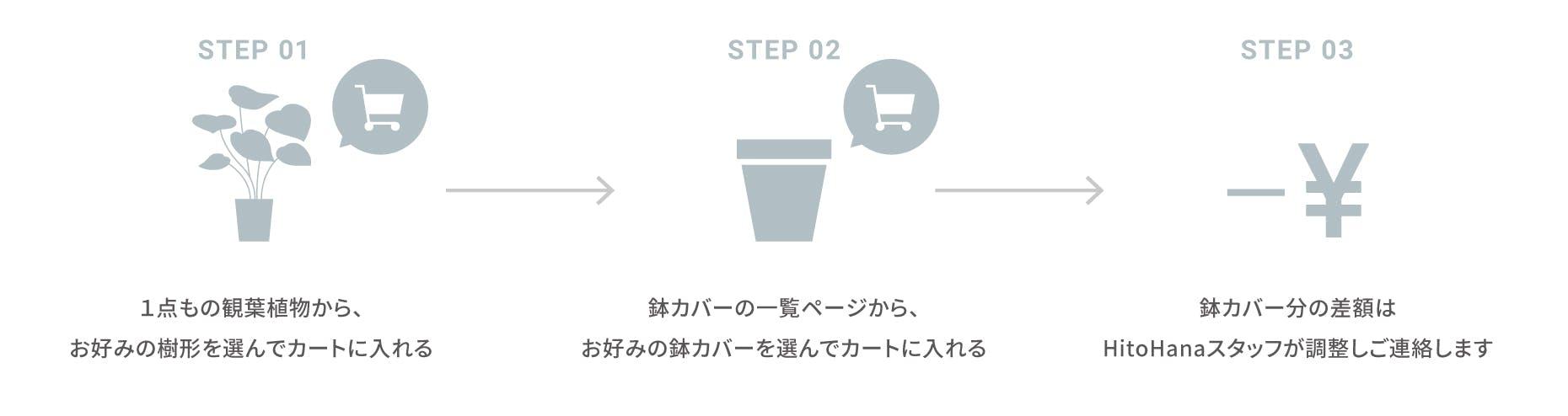 1点もの観葉植物の買い方